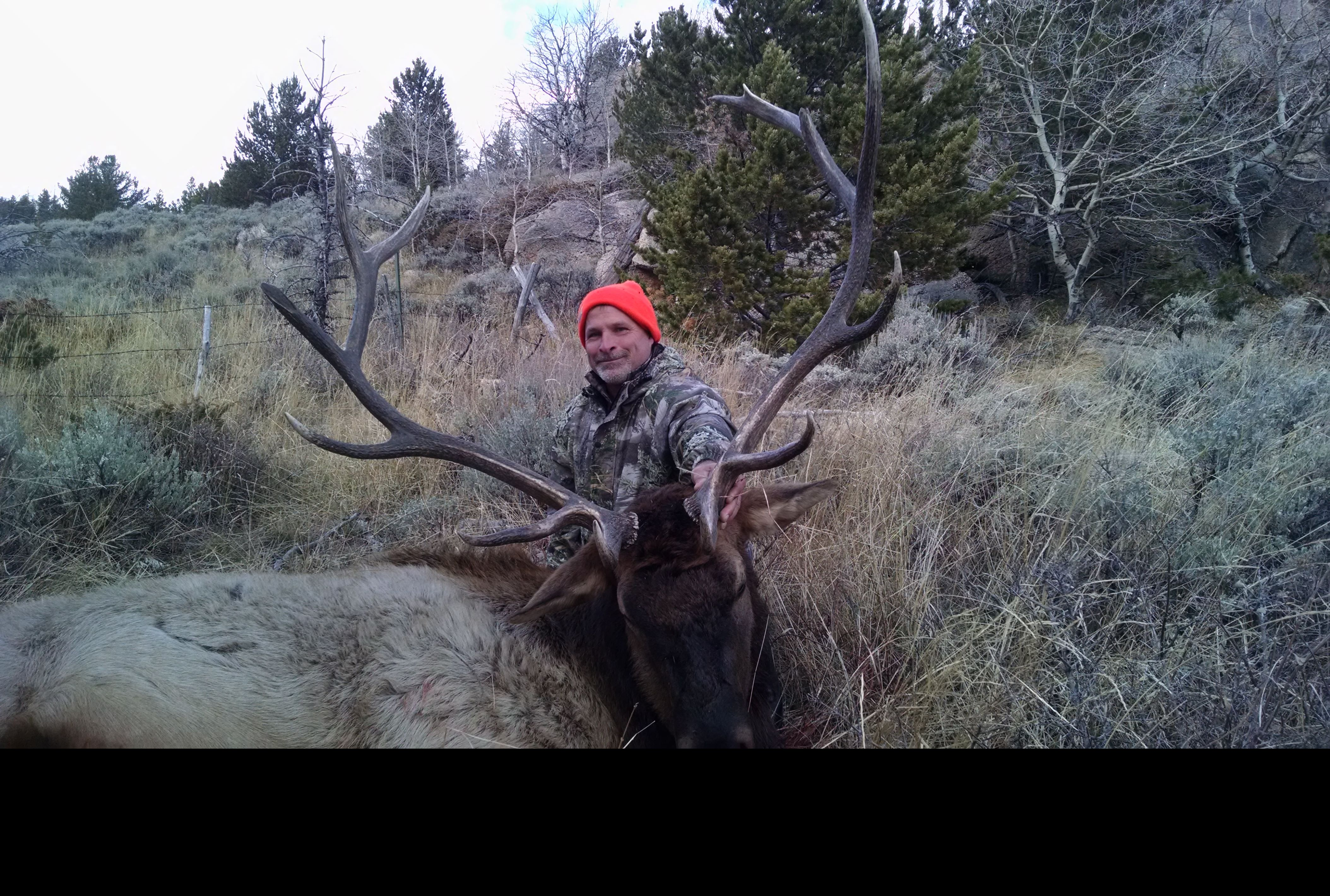 Best Wyoming Elk Units 2020 Cowboy Country Outfitters of Wyoming